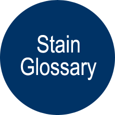Stain Glossary button link